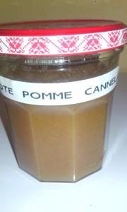 pomme-cannelle septembre 14